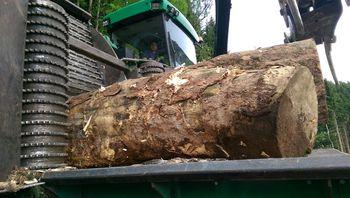 Holz häckseln - Silvator im Einsatz
